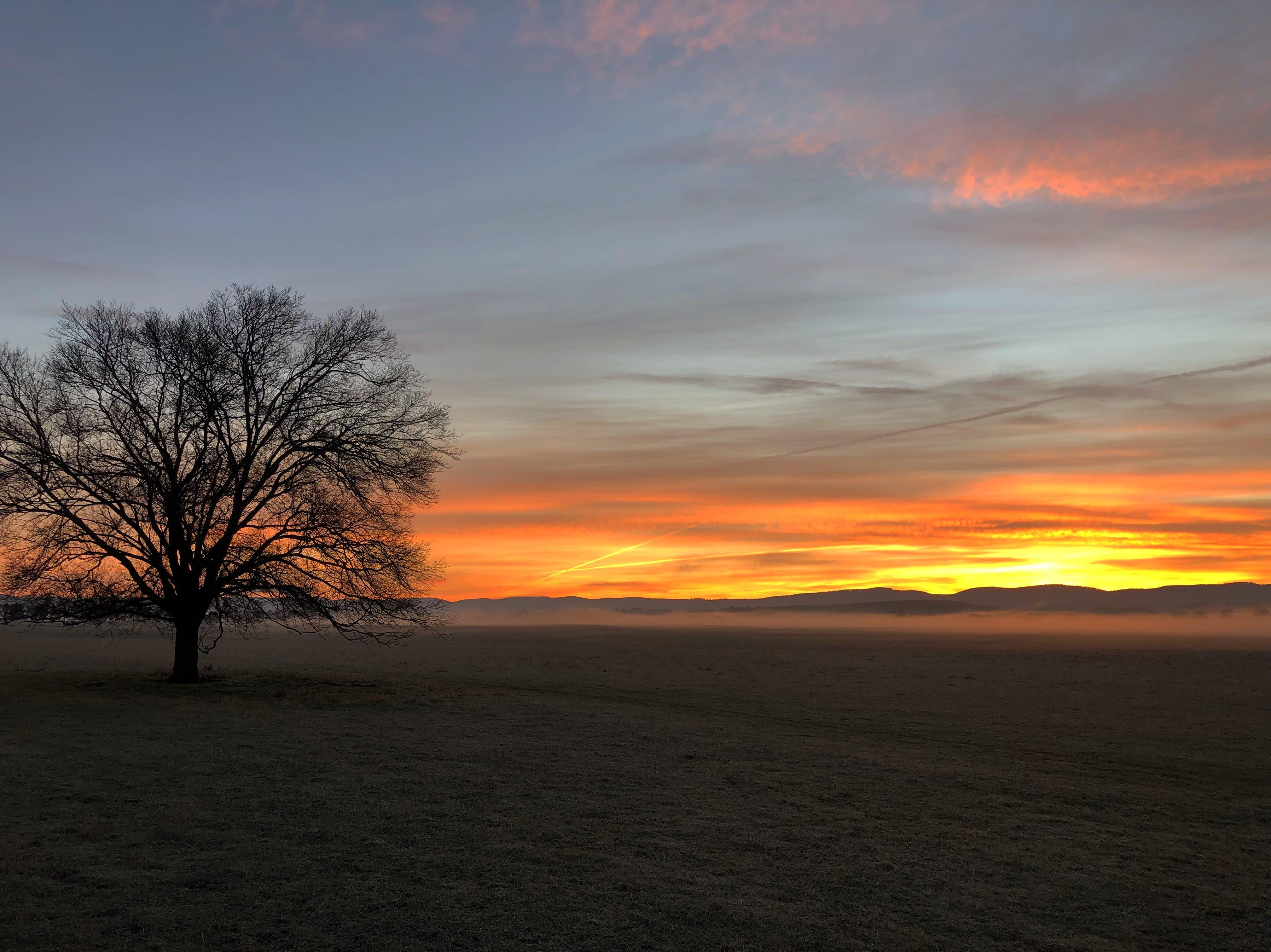 Free stock photo of Tasmanian sunrise