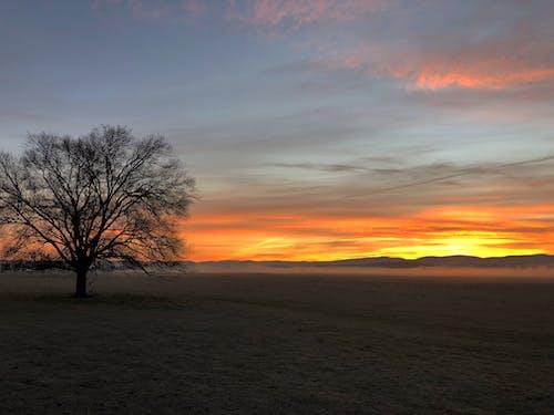 Fotos de stock gratuitas de amanecer de tasmania