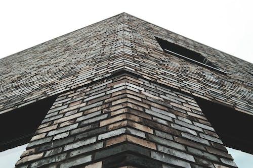 Foto stok gratis Arsitektur, barang kaca, batu bata, Desain