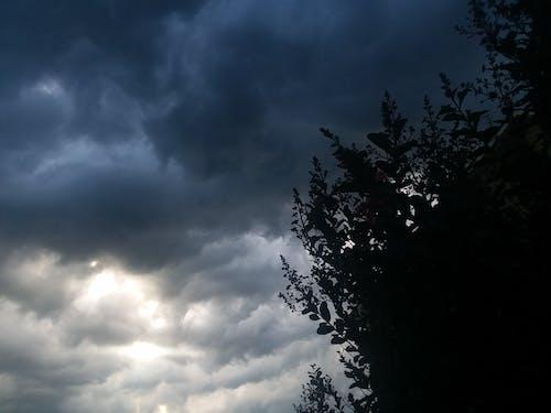 Free stock photo of rain, storm, weather