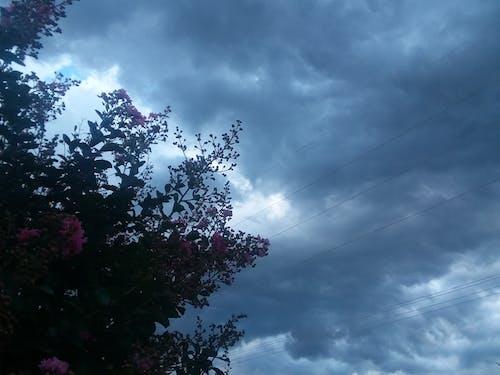 Free stock photo of rain, storm