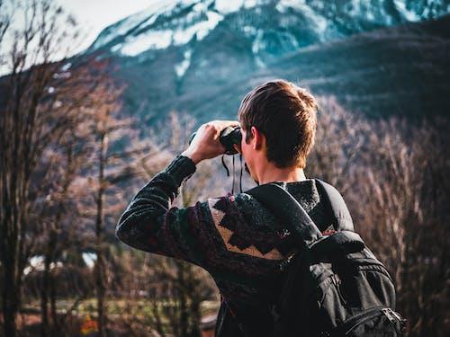 Foto d'estoc gratuïta de arbres, binoculars, buscant, desgast
