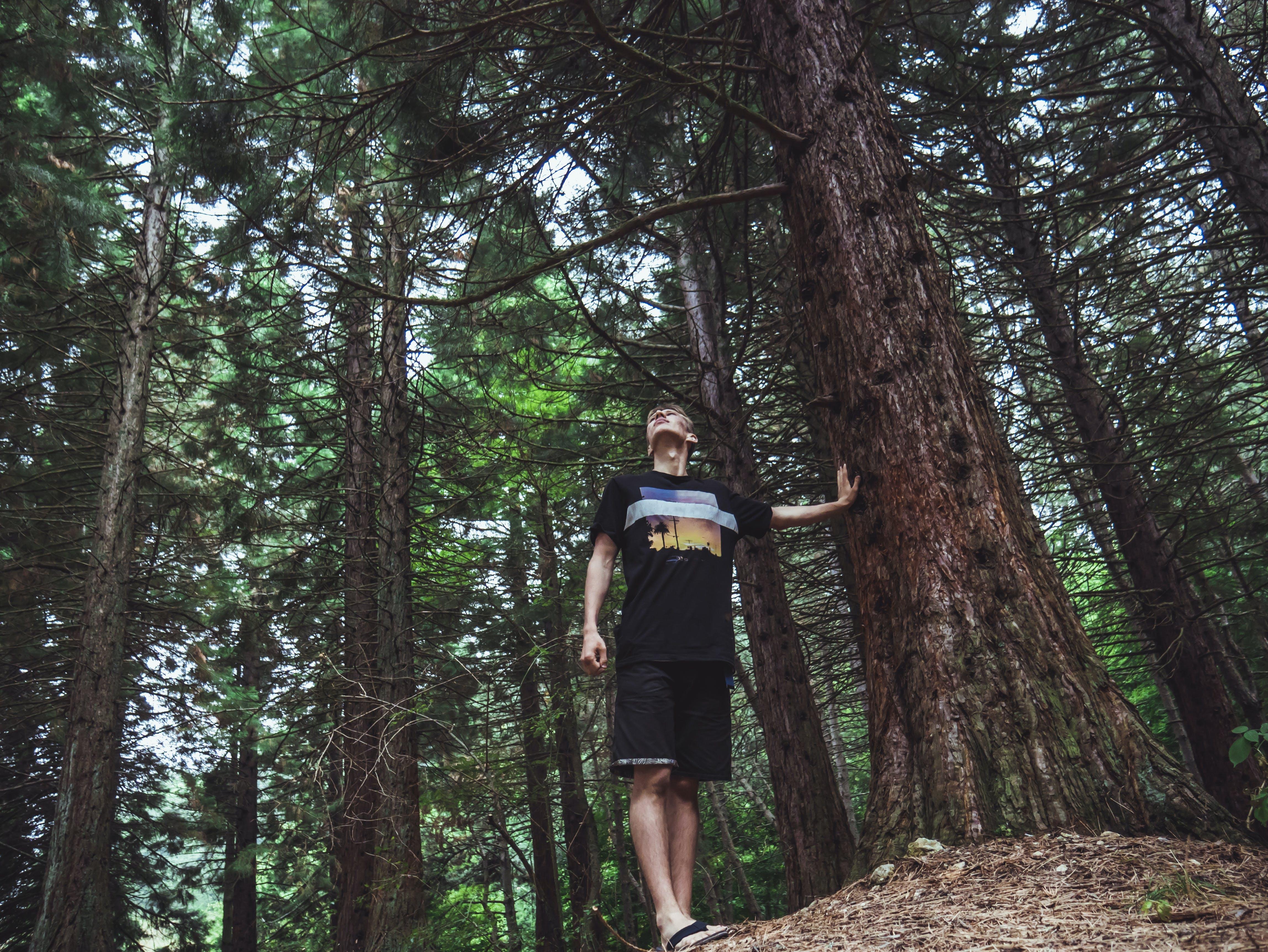 Man Wearing Black Shirt Touches Tree Trnk