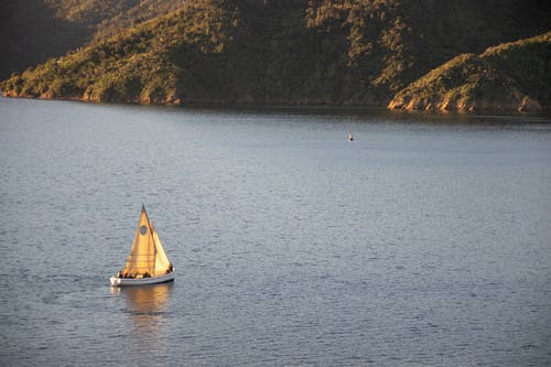 Gratis arkivbilde med båt, dagslys, fartøy, fugleperspektiv
