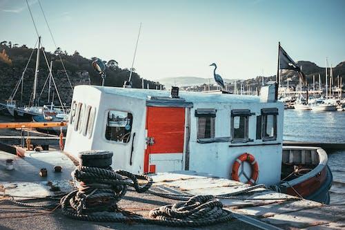 Photos gratuites de amarré, baie, bateau de pêche, bateaux