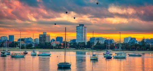 보트, 수역, 풍선 도움말의 무료 스톡 사진