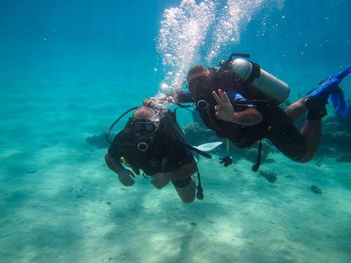 好, 海, 潛水, 潛水員 的 免费素材照片