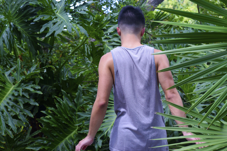 Free stock photo of boy, men, plants, walking