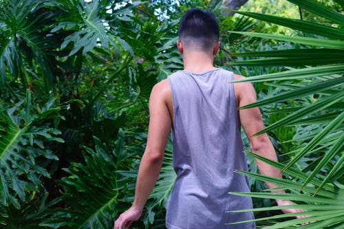 bitkiler, erkek çocuk, erkekler, yürümek içeren Ücretsiz stok fotoğraf