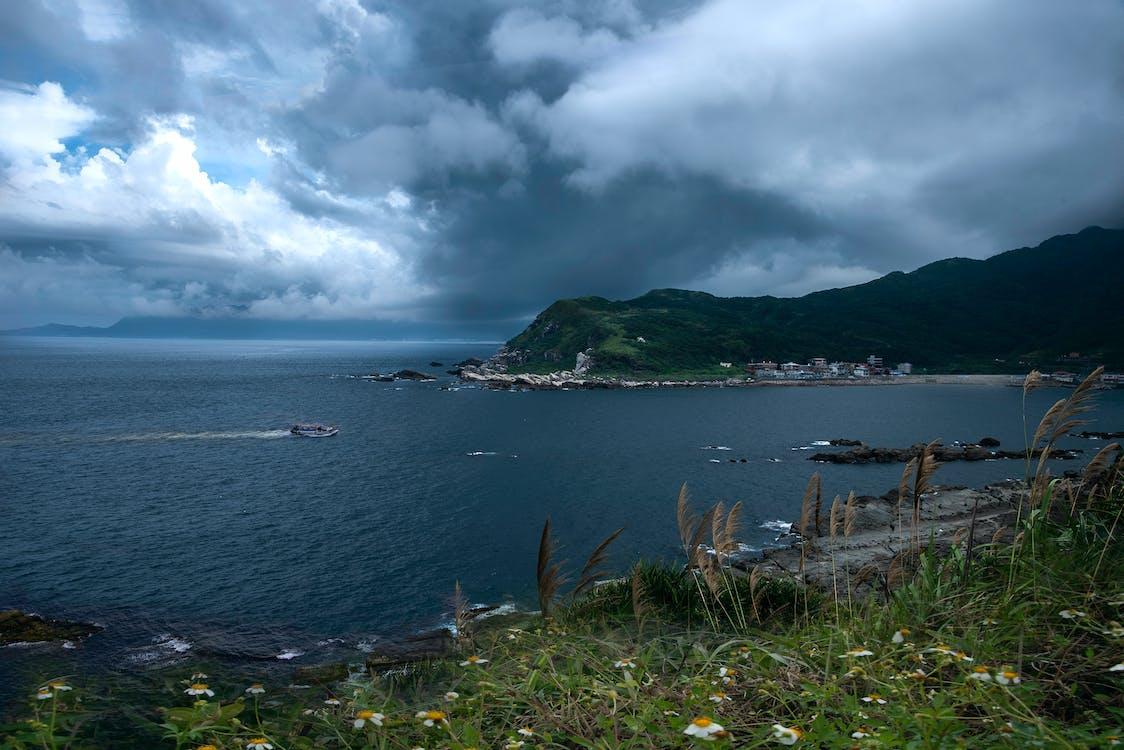felhős égbolt, tengeri kikötő, tengeri lény