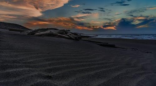 Ingyenes stockfotó homokdűne, naplemente, uszadékfa témában