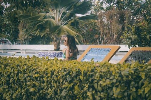 Ilmainen kuvapankkikuva tunnisteilla aurinkolasit, henkilö, lomakohde, maisema