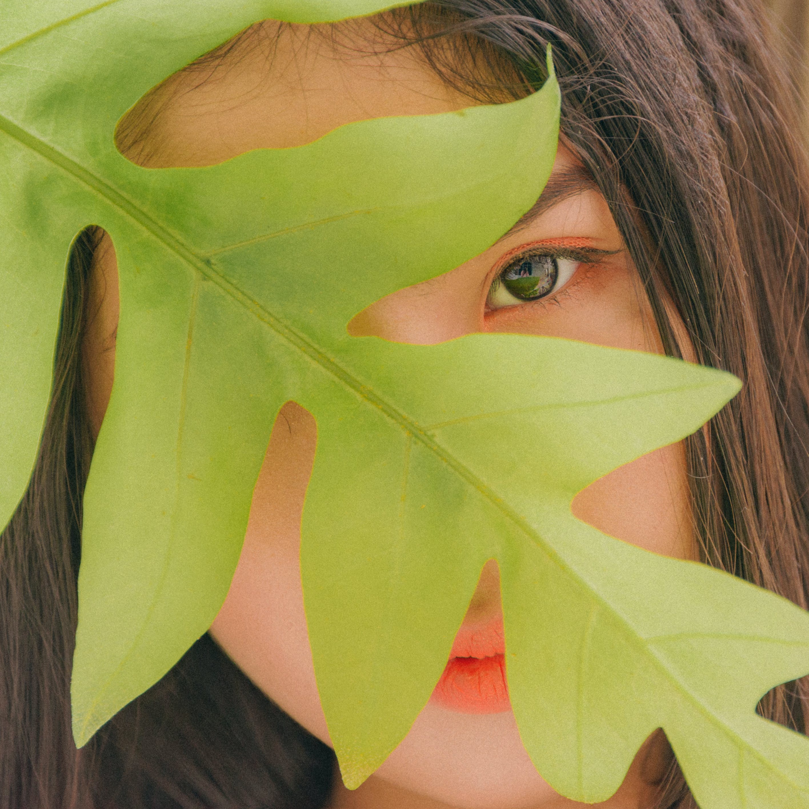 Photography of Woman Near Leaf