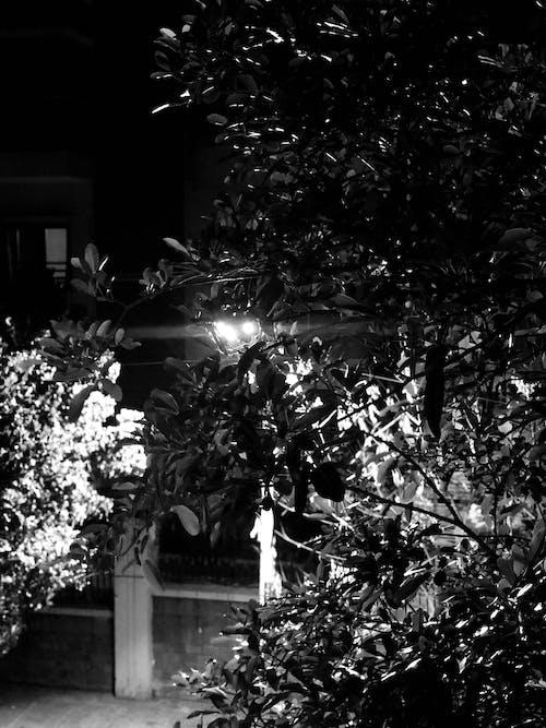 Gratis stockfoto met eenkleurig, fabrieken, nachtstad, zwart
