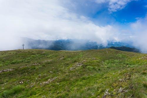 Darmowe zdjęcie z galerii z góra, krajobraz, łąka, malowniczy