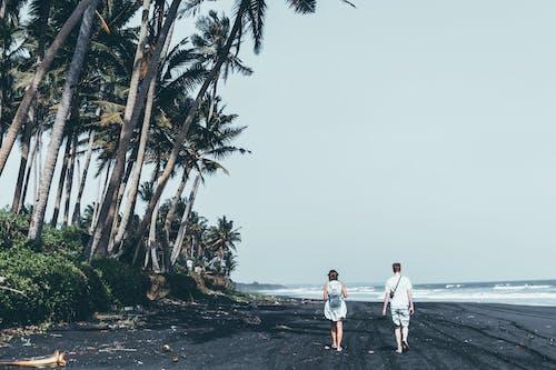 คลังภาพถ่ายฟรี ของ กลางวัน, การพักผ่อนหย่อนใจ, การเดิน, คน