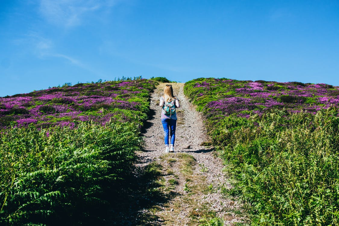 Woman Walking Alone in Between Purple Flower Field