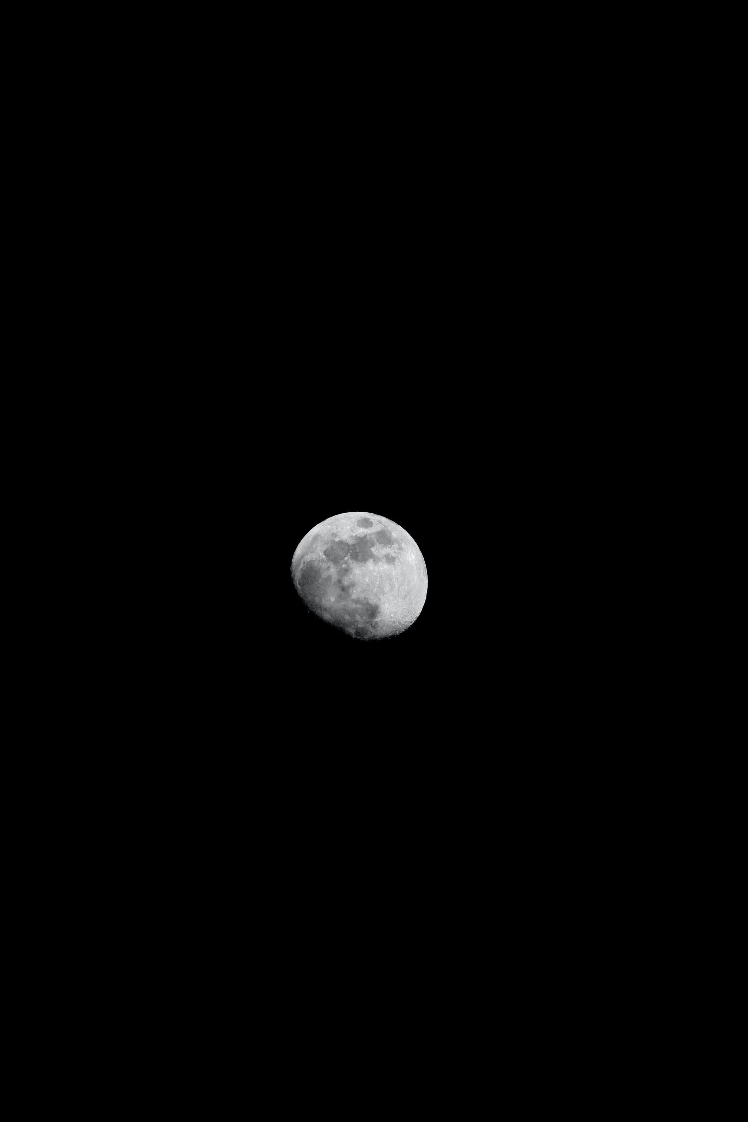 Hdの壁紙 夜 月の無料の写真素材