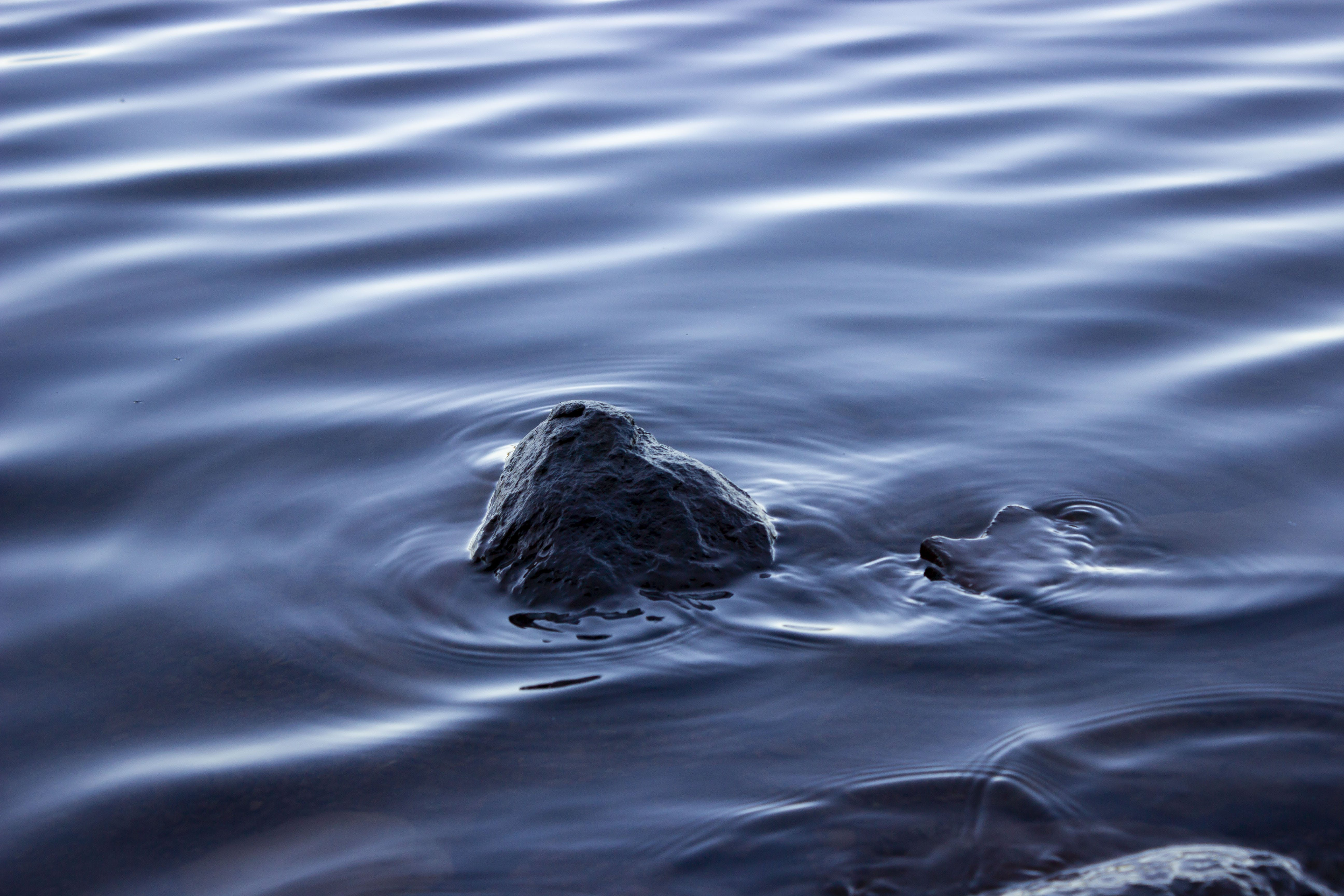 Free stock photo of rock, smooth, water