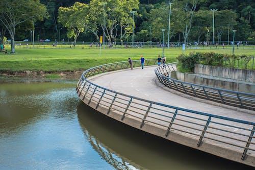 Gratis lagerfoto af arquiteture, barigui, bro, Curitiba