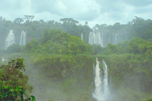 Gratis lagerfoto af cachoeira, cataratas, foz, grøn