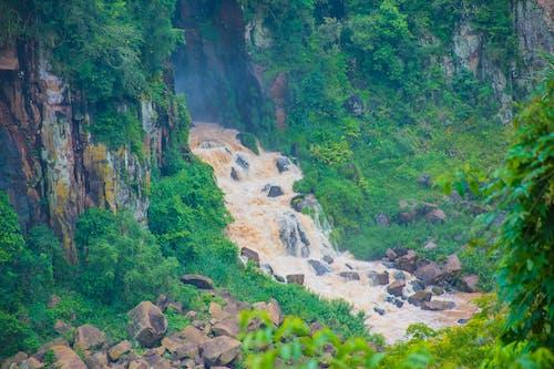 Gratis lagerfoto af cachoeira, cataratas, grøn, luk