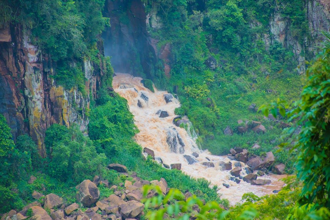 cachoeira, cataratas, grøn