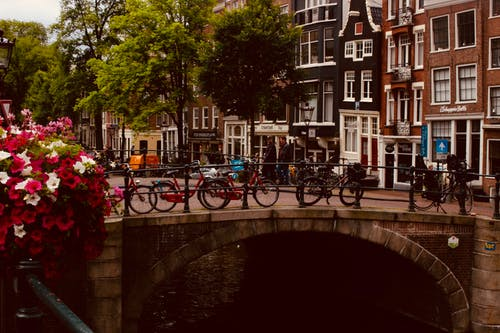 Imagine de stoc gratuită din Amsterdam, apă, arbori, arhitectură