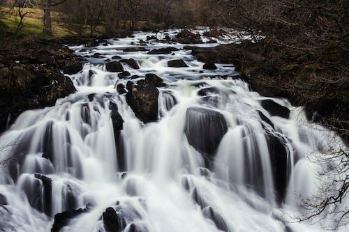Fotos de stock gratuitas de agua, cascada, cascadas, caudal