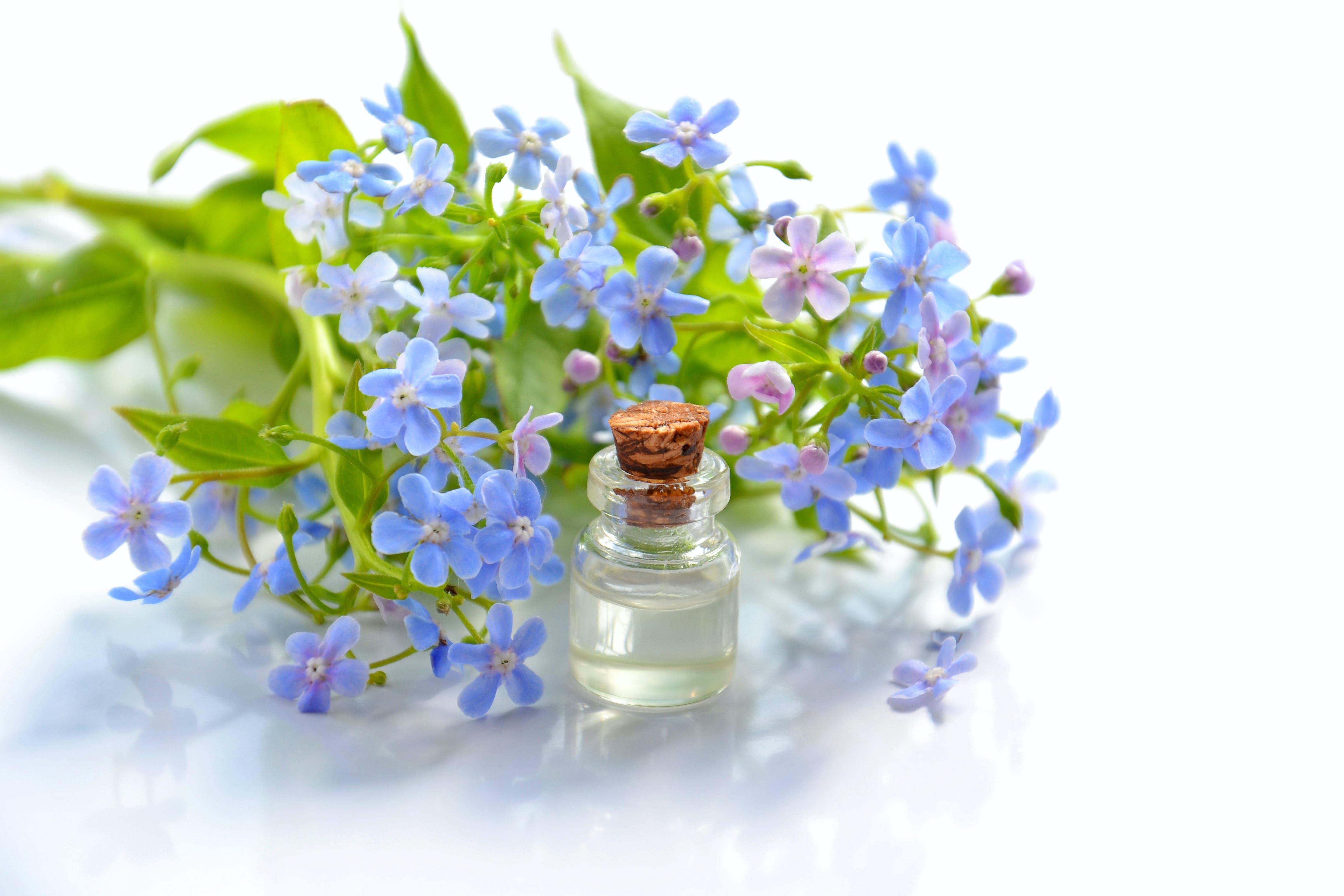 Purple Flowers Beside Clear Glass Bottle