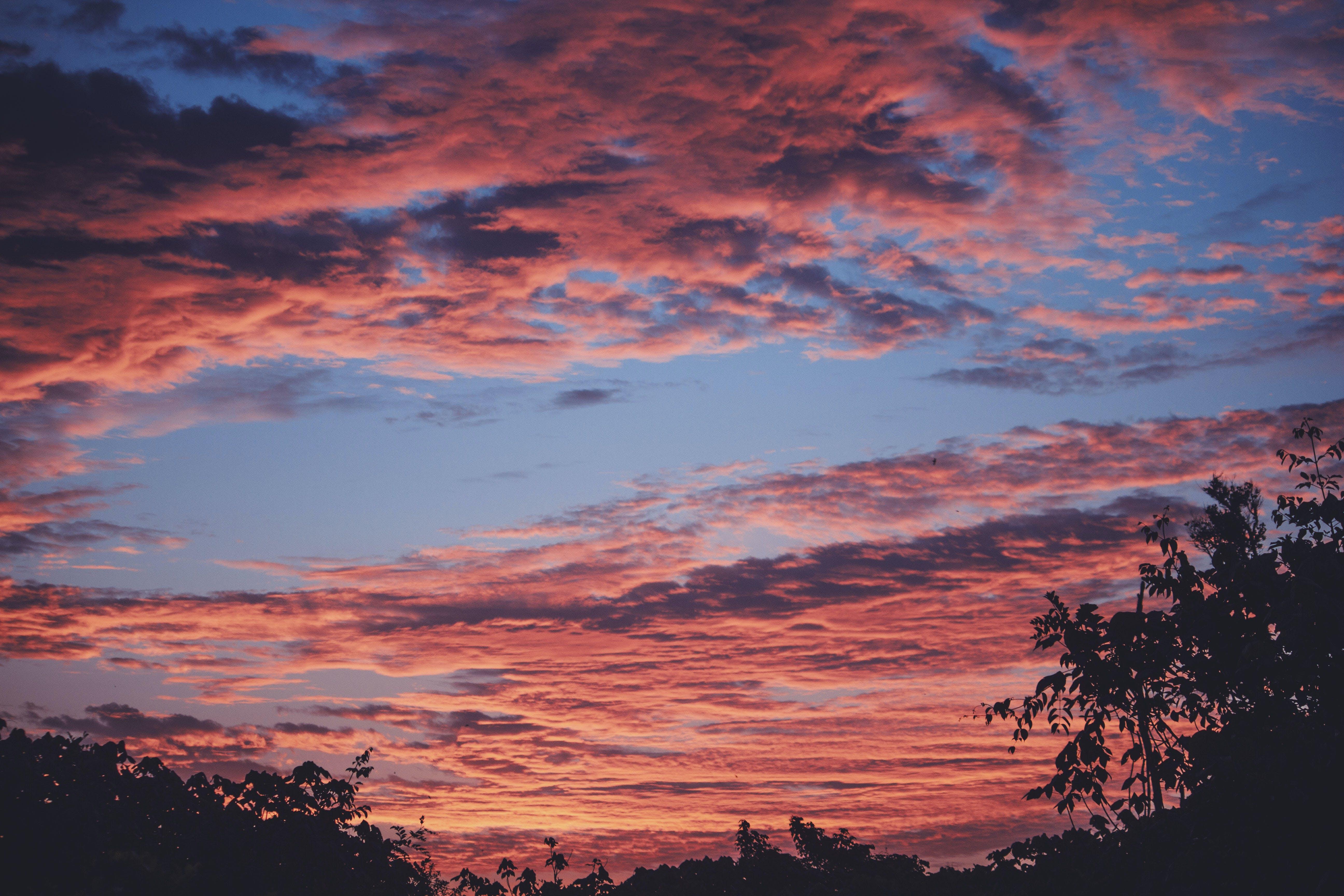 Free stock photo of nature, sky, sunset, photography