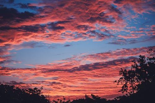 Бесплатное стоковое фото с HD-обои, веб-дизайн, закат, небо