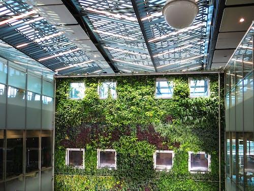 反射, 天花板, 室內, 建築設計 的 免費圖庫相片