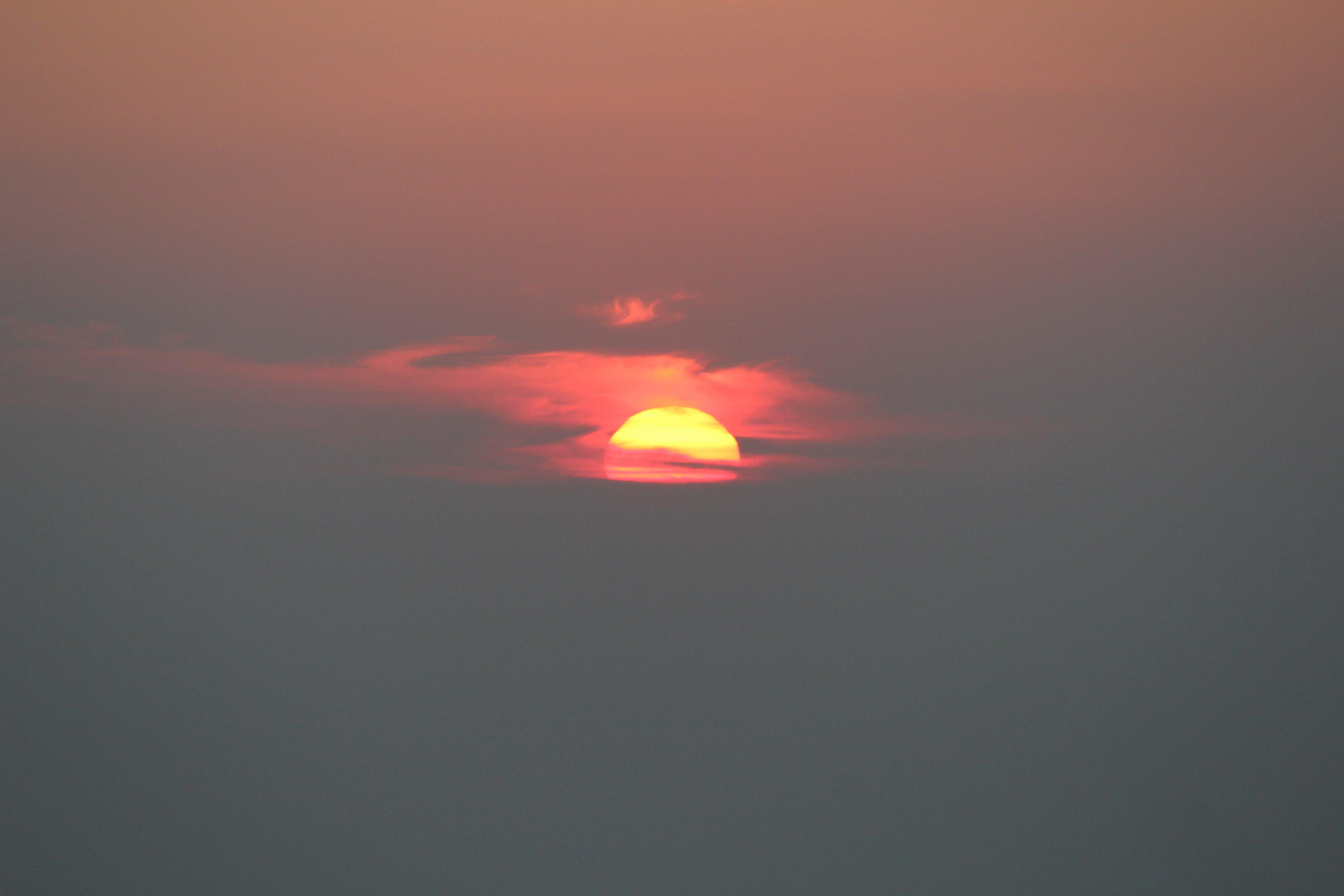 Free stock photo of evening sun, golden sun, golden sunset, morning sun