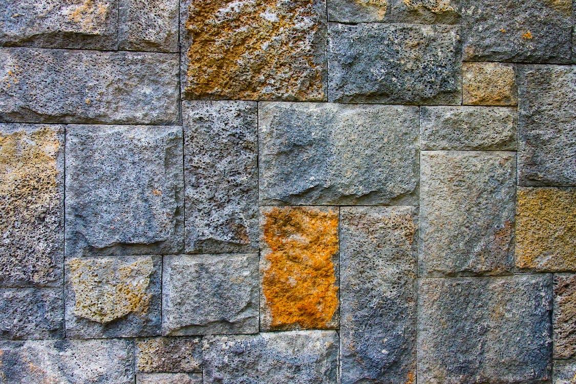 disseny, estampat, mur