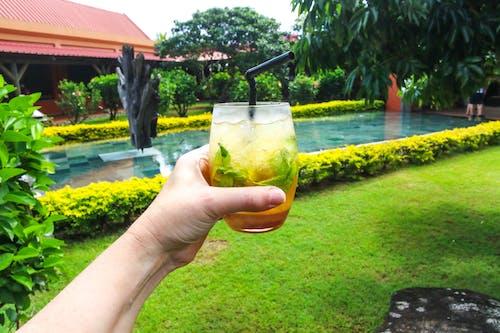Darmowe zdjęcie z galerii z czas wolny, drink, dziedziniec, napój