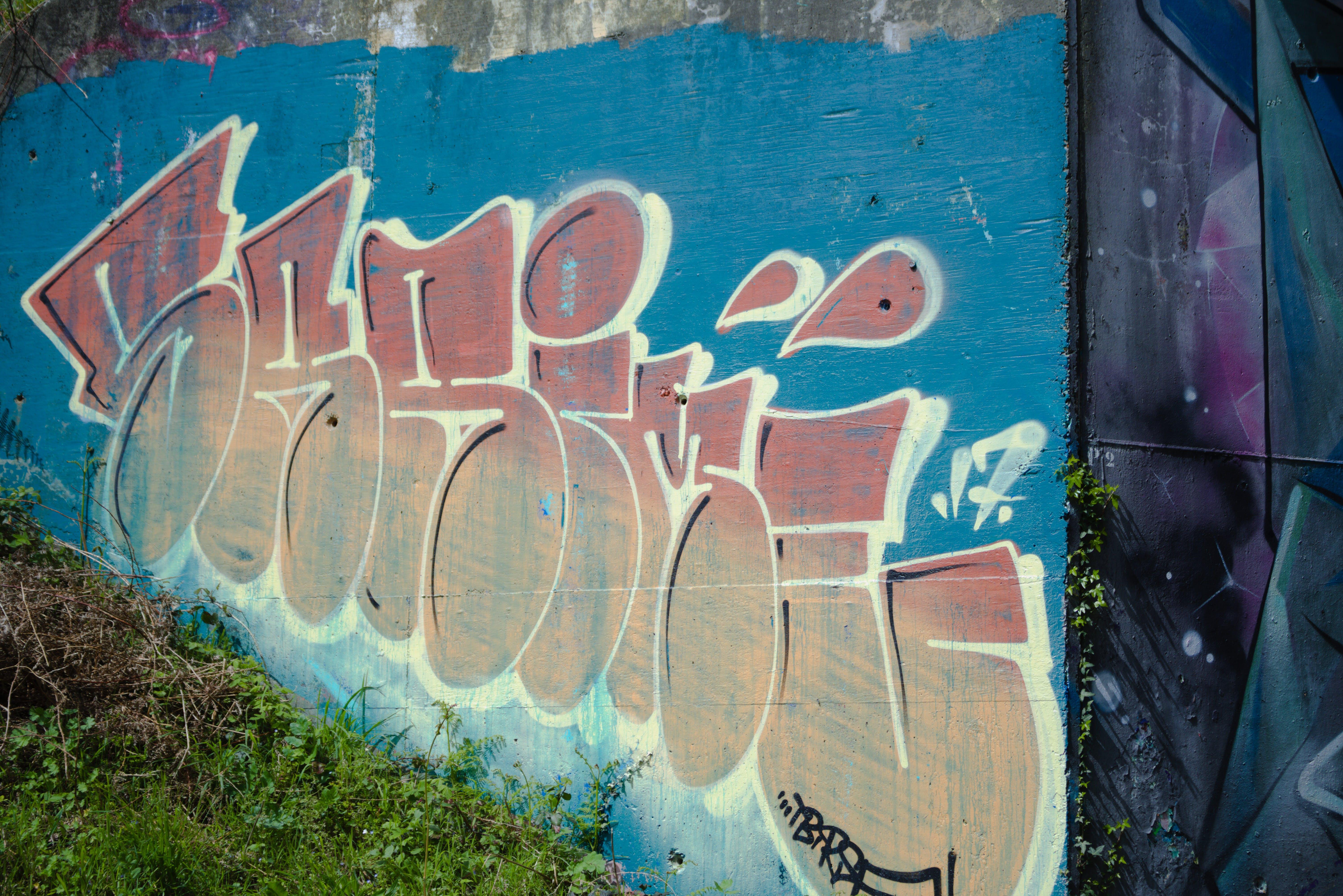 Free stock photo of art, street art, mur, urbain