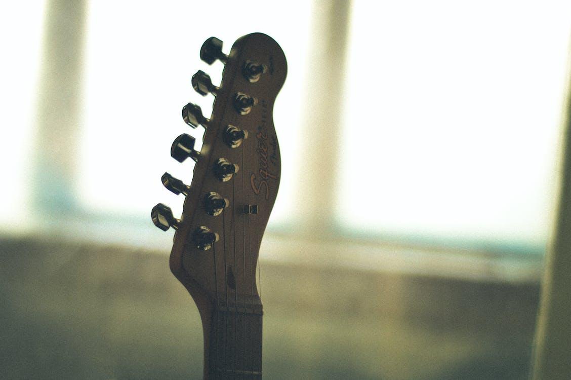 cận cảnh, chắn bùn, đàn ghi ta