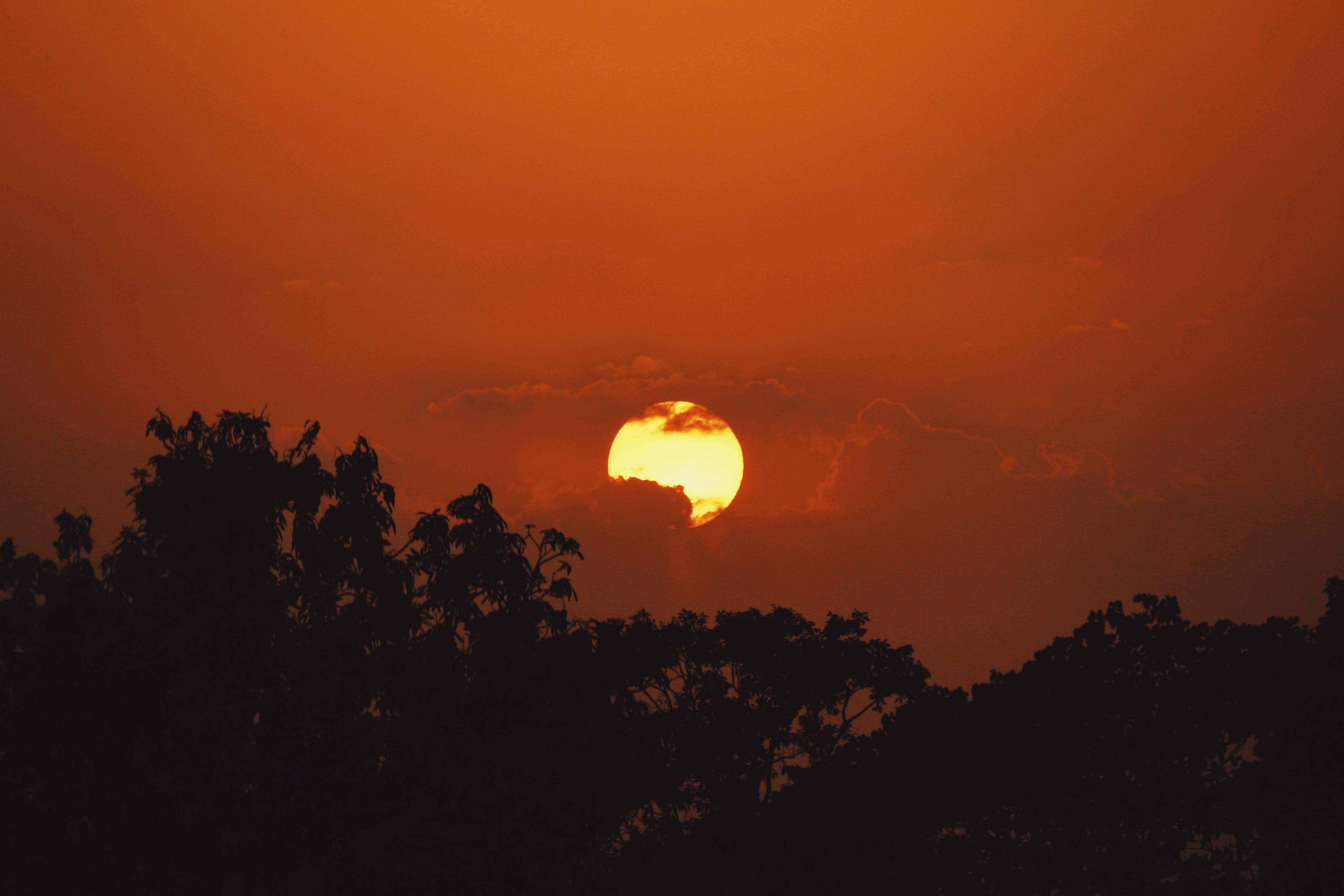 Free stock photo of evening sun, sunset