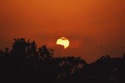 Gratis arkivbilde med kveldssol, solnedgang