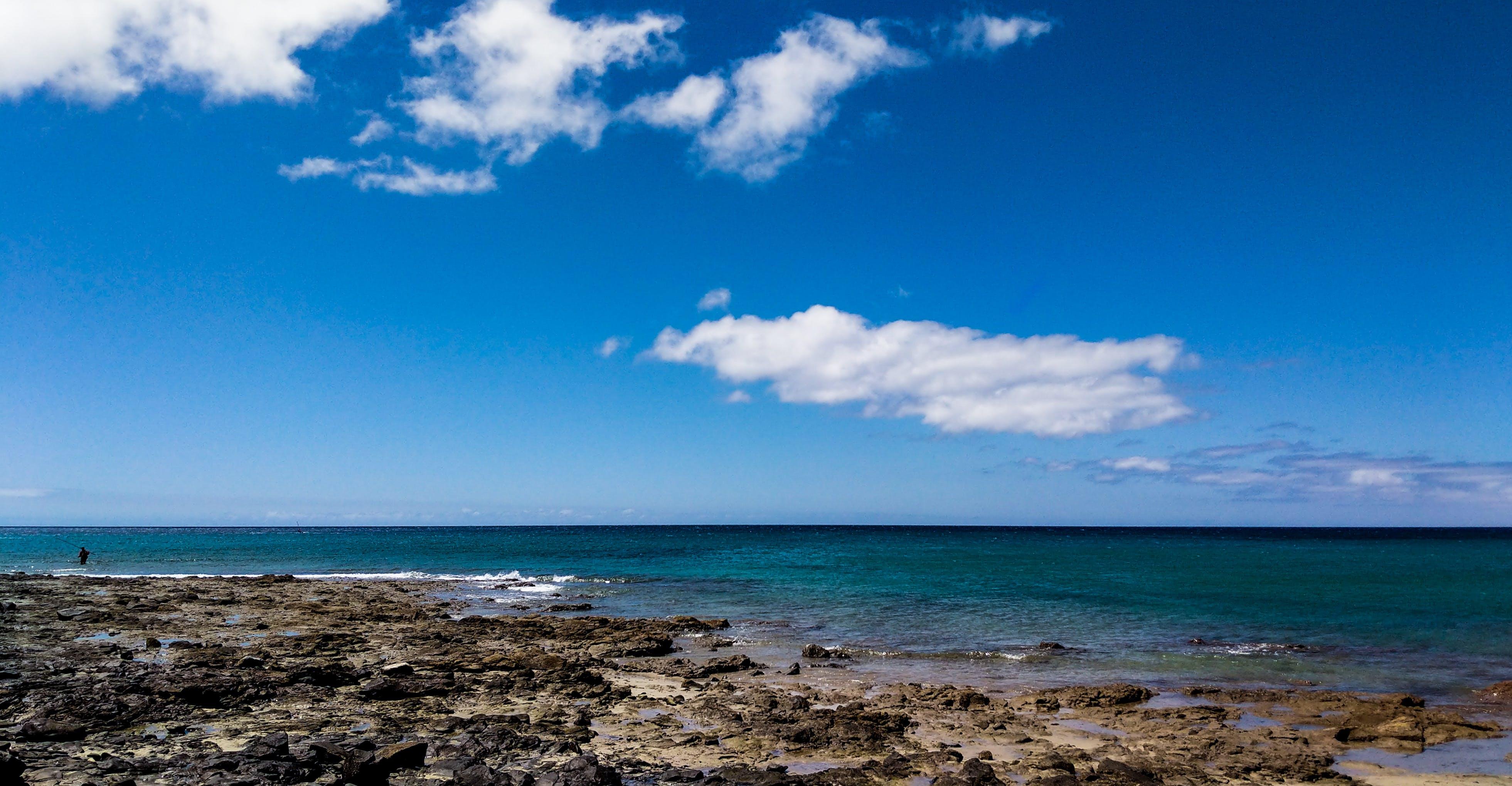 Free stock photo of beach, ocean, water