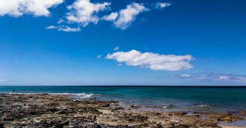 Kostenloses Stock Foto zu ozean, strand, wasser
