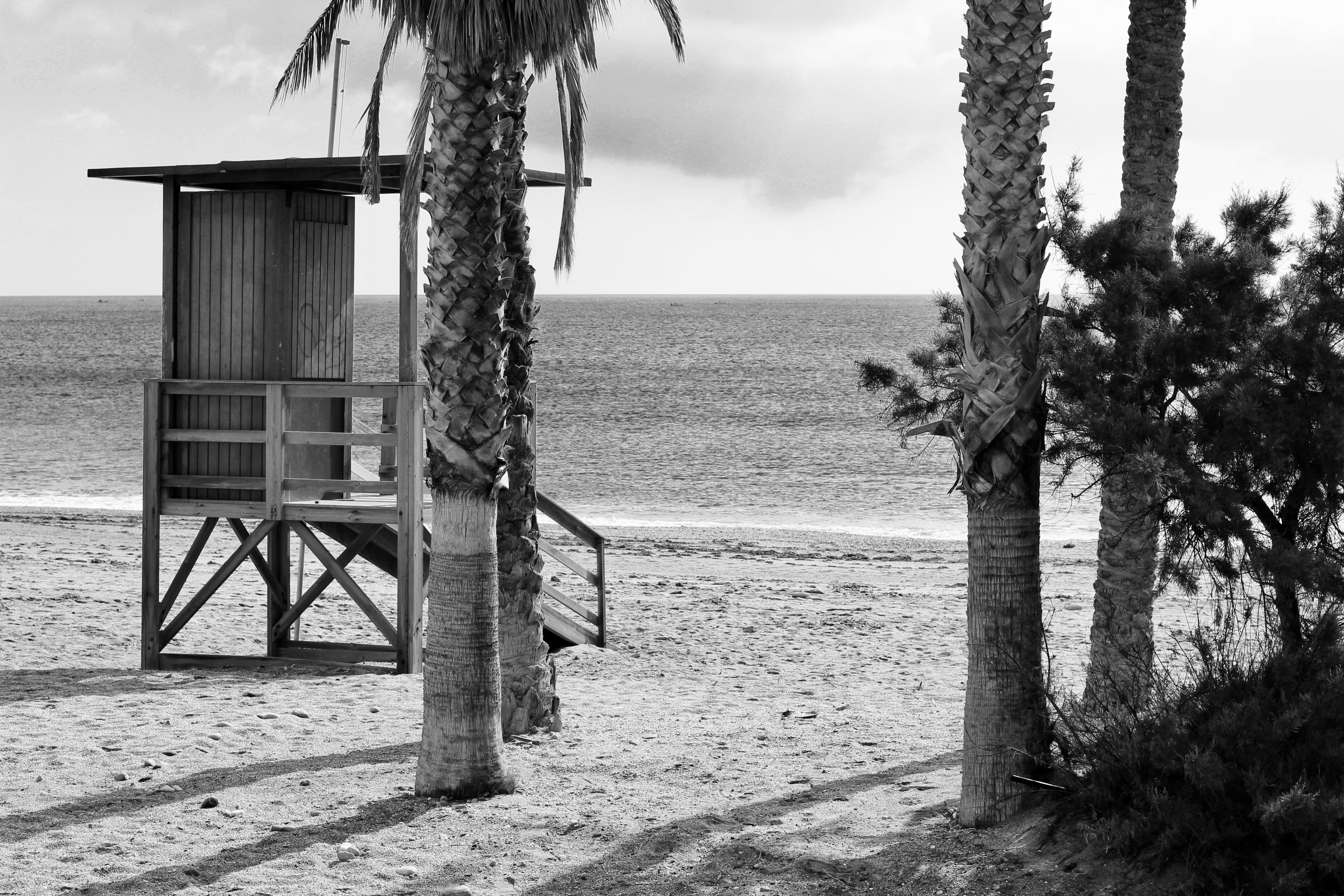 Free stock photo of beach, black and white, lifeguard tower, palm trees