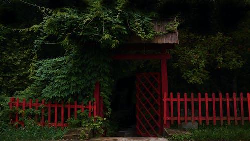 Free stock photo of dar, fence, garden, gate