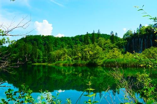 Fotobanka sbezplatnými fotkami na tému Chorvátsko, jazierko, plitvice, vodopád