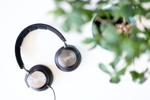 Free stock photo of depth of field, headphones, music, plant