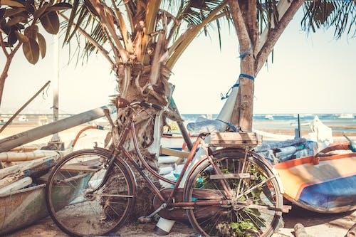 交通系統, 停, 古董, 巡洋舰自行车 的 免费素材照片