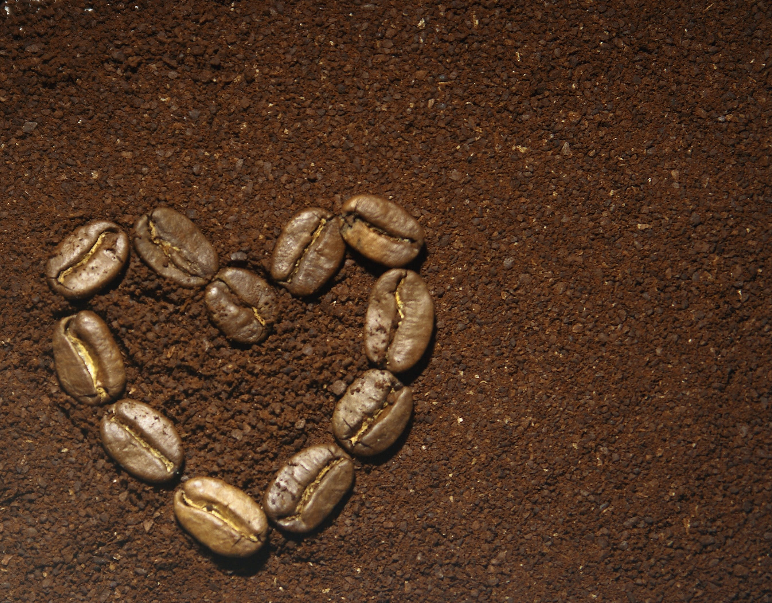 Free stock photo of black coffee, coffee, coffee beans, specialty coffee
