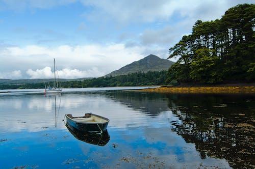 Free stock photo of beara, boat, country, holiday