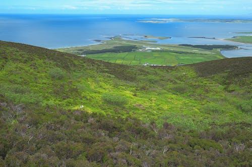 Free stock photo of country, green, holiday, ireland